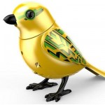 Digi Bird