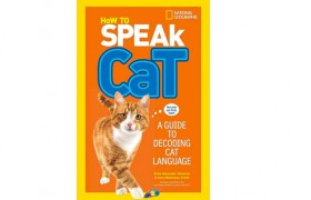 How To Speak Cat Book