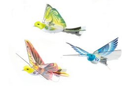 eBird RC Flying Bird